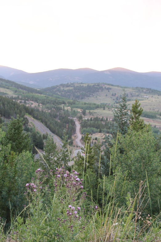 Looking down on the road that led to the 9,000 ft. mountaintop where we camped, Colorado, @ 2013 www.CatherineEmclean.com