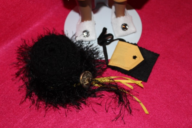 img_5176-2016-oct-1-shoes-hat-purse